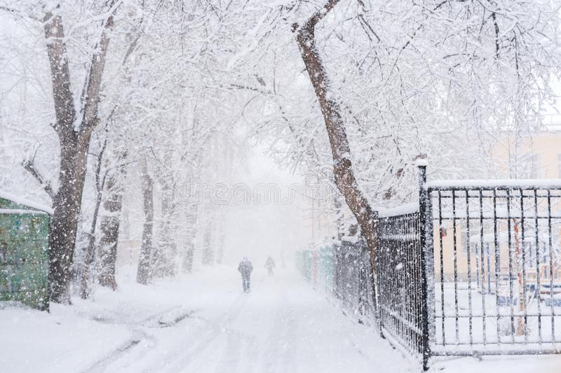 Snowy city road between trees and barely visible walking people during plentiful snowfall. Snowy city road between snow-covered trees and barely visible walking royalty free stock photo