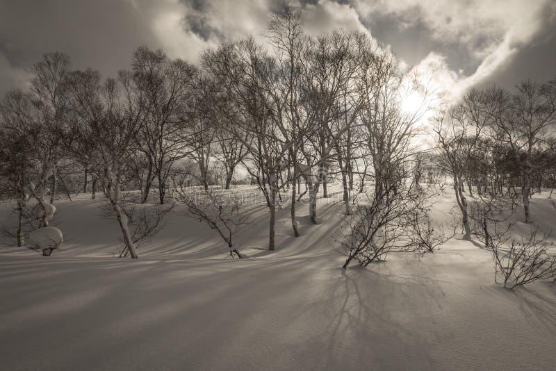 Snowy cloudy mountain scenery near Goshiki Onsen royalty free stock photos