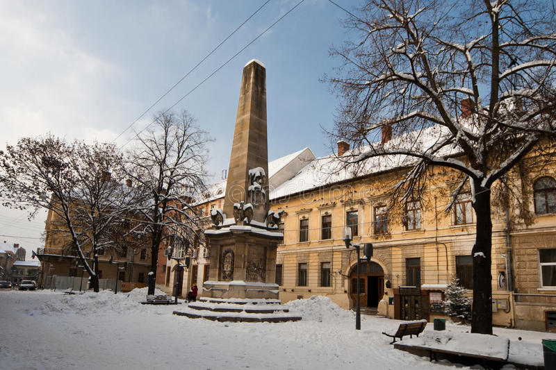 Snowy Cluj royalty free stock images