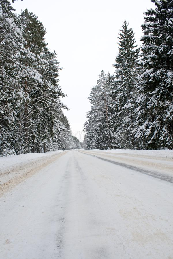 Download Snowy country road stock photo. Image of highway, nobody - 13561630