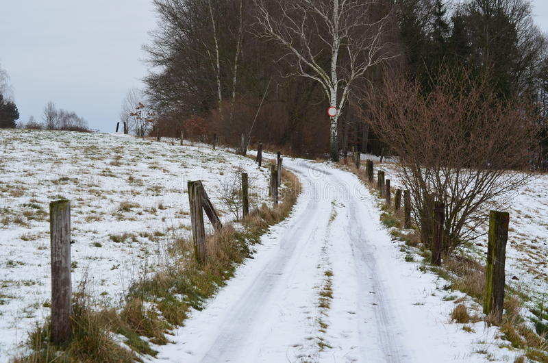 Download Snowy country road stock photo. Image of straight, forest - 48559352