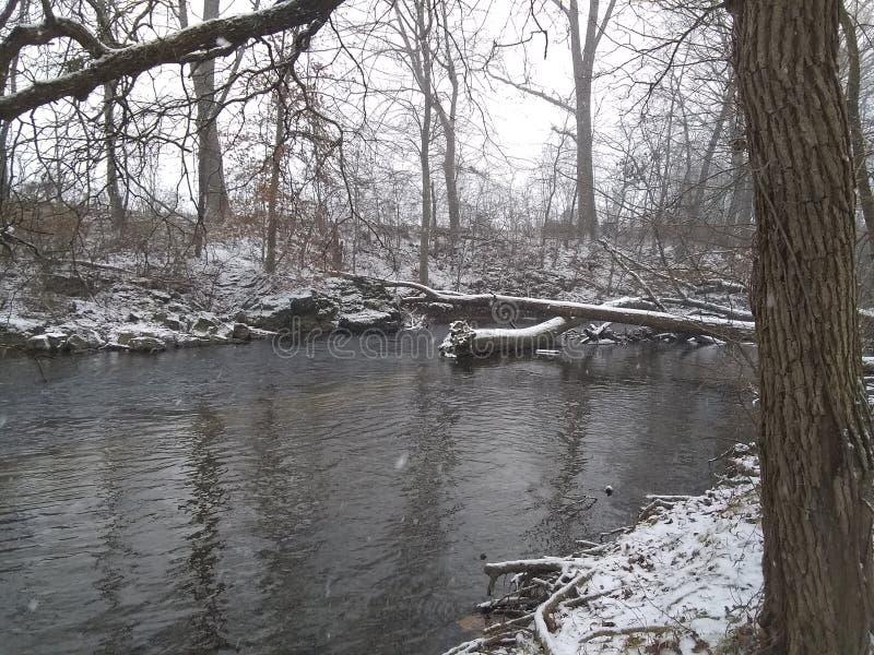 Snowy Creek Yellow Breeches. Snowy Creek Yellow royalty free stock photo