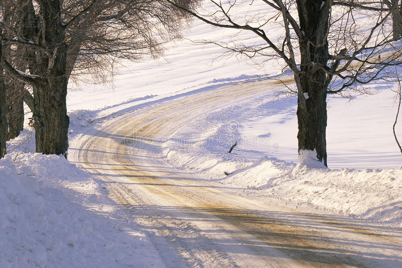 Download Snowy Dirt Road Stock Photo - Image: 23163010