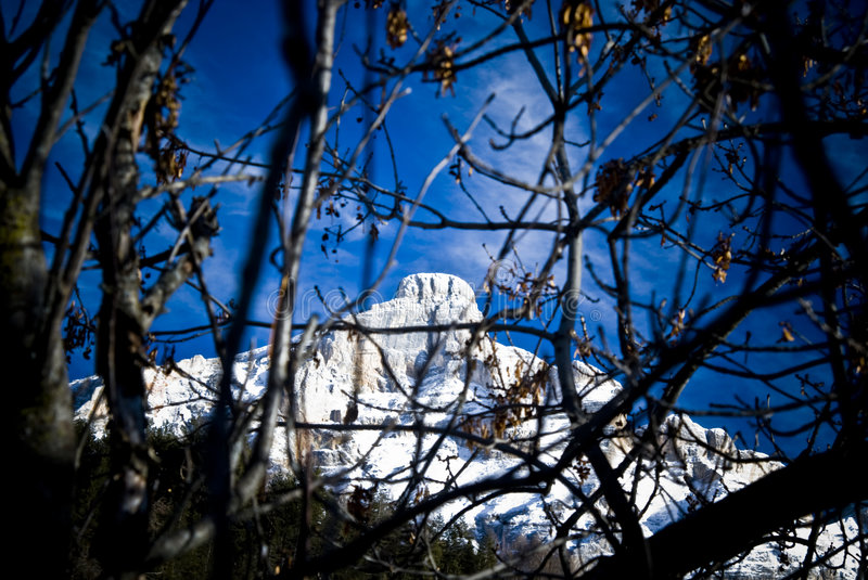 Snowy Dolomites mountains. Scenic view of snow covered Dolomites mountains with trees and branches in foreground, Italy stock photography
