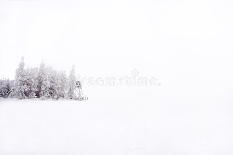 Snowy e quadro di comando congelato nelle pianure medie fotografie stock