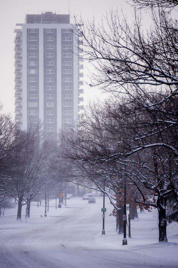 Snowy Eden Park - Cincinnati, Ohio lizenzfreie stockfotos