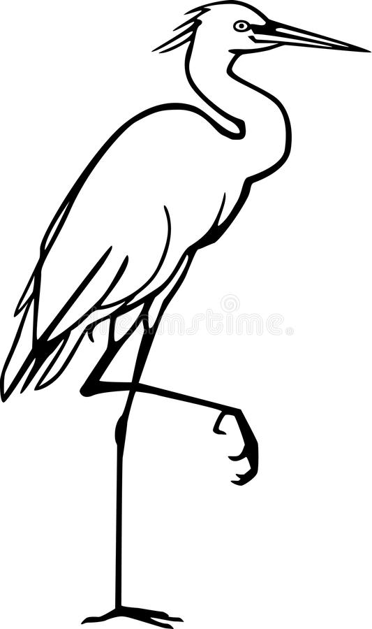 Vector Drawing Lines Xbox One : Snowy egret stock vector image