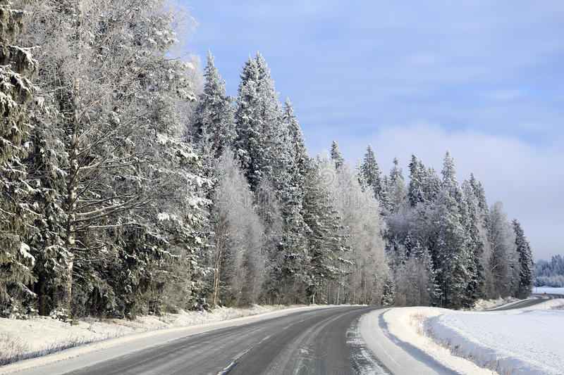 Snowy Forest by Empty Main Road stock image