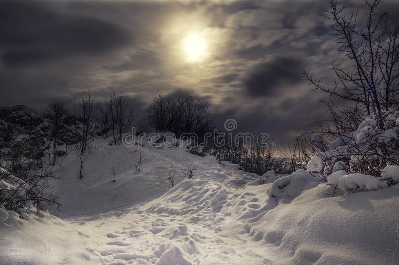 Snowy and frozen Top of hill with cloudy night sky and moonlight with city lights on the background. Forest in Slovakia on the mo stock images