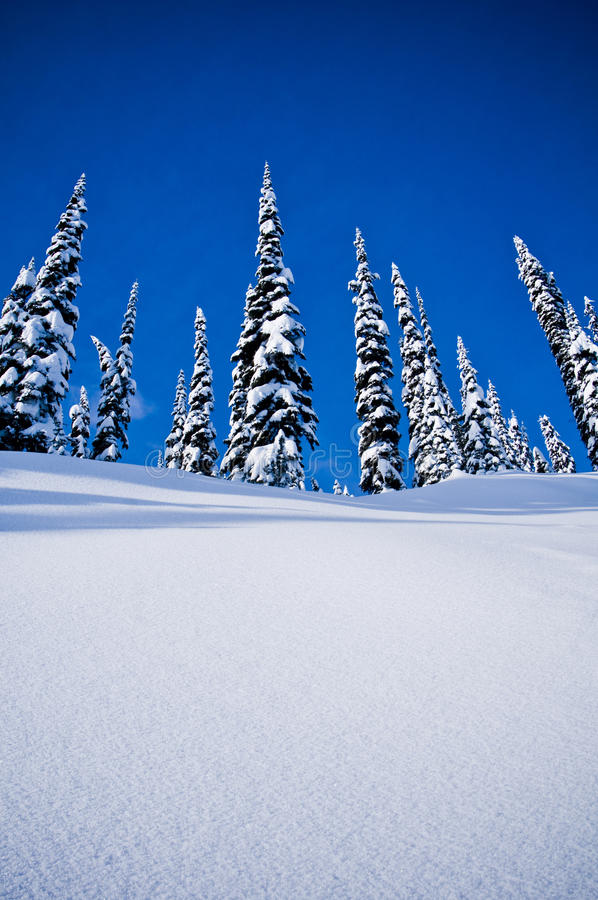 Snowy hill royalty free stock photography