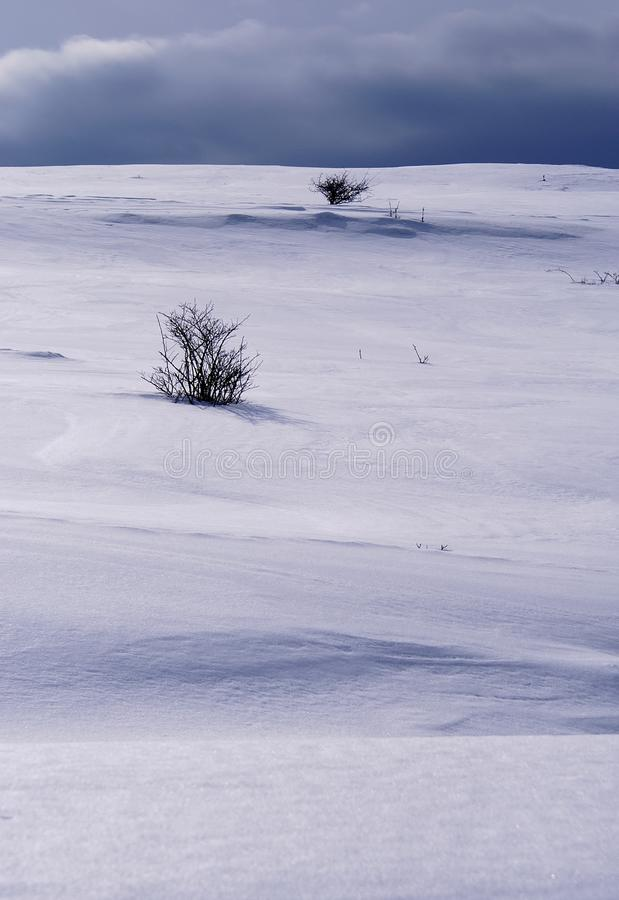 Snowy hill stock photography