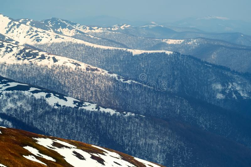 Snowy hills with naked forest. In spring mountains. Landscape photography stock photography