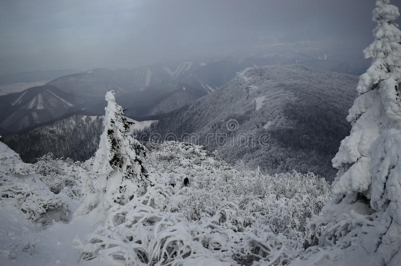 The Snowy Hills royalty free stock image