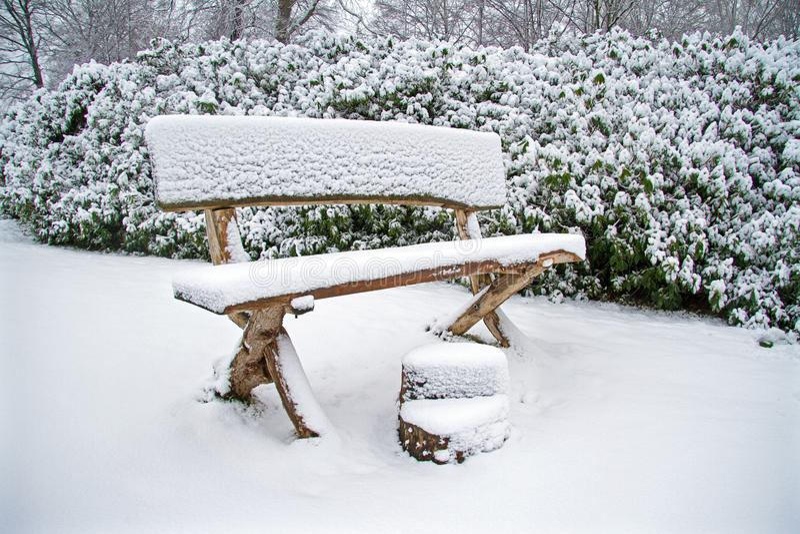 Snowy-Holzbank im Wald lizenzfreie stockfotos