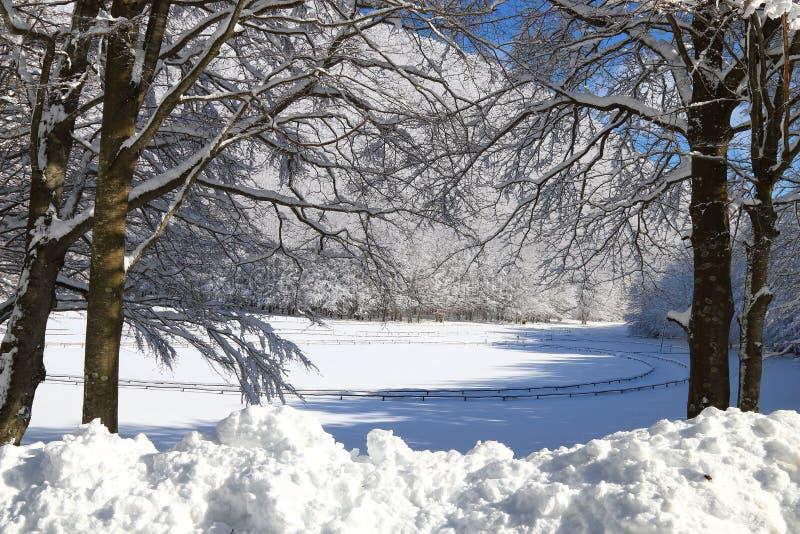 Snowy landascape stock photos