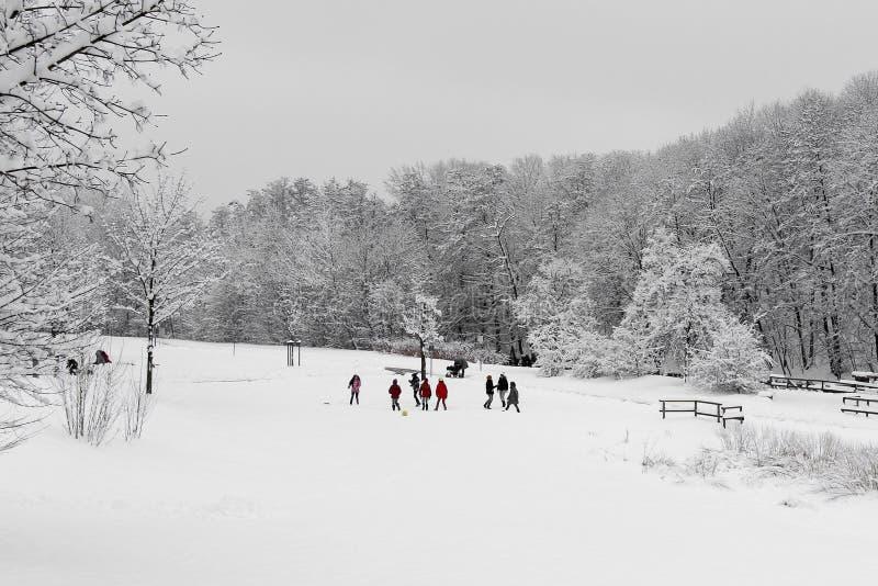 Snowy landscape with children stock photos