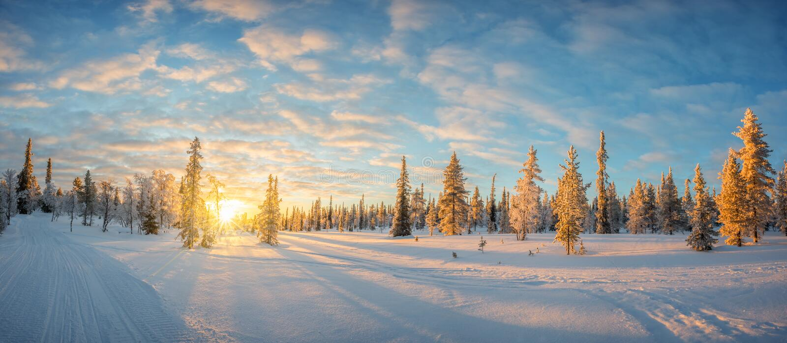 Snowy landscape at sunset, frozen trees in winter in Saariselka, Lapland Finland stock photos