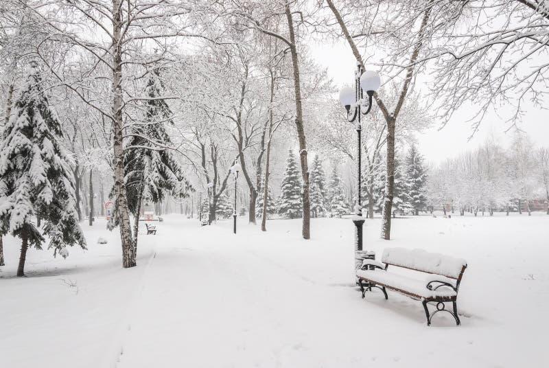 Snowy-Landschaft mit Bänke lizenzfreies stockbild