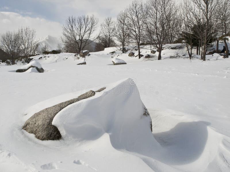 Snowy-Landschaft mit einem Felsen stockfotos