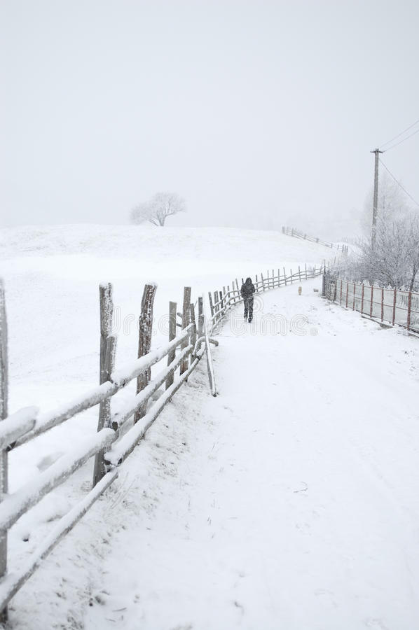 Snowy-Landschaftsstraße lizenzfreie stockfotografie