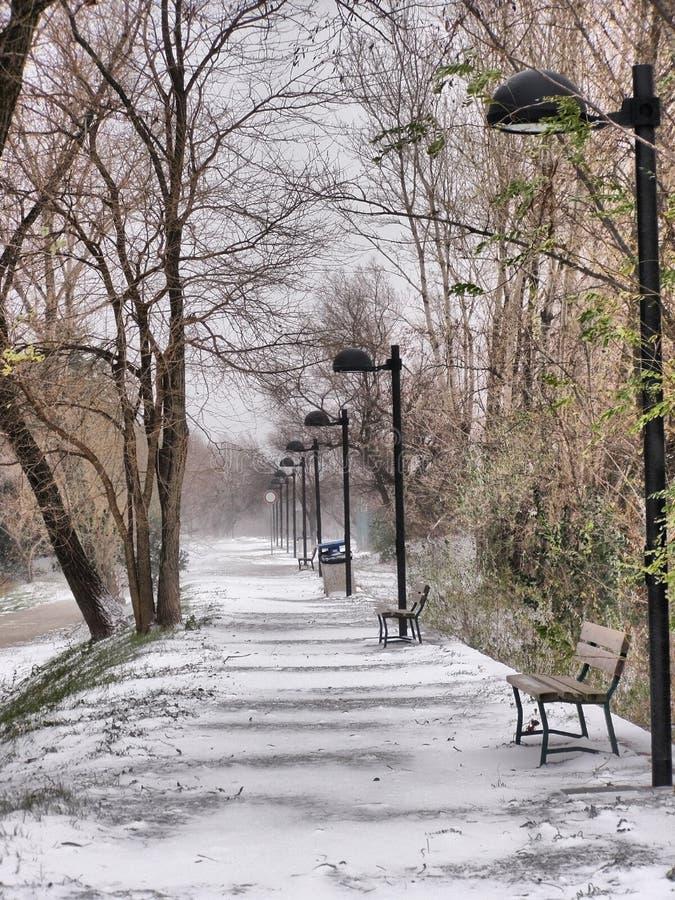 Snowy Lane Royalty Free Stock Photos