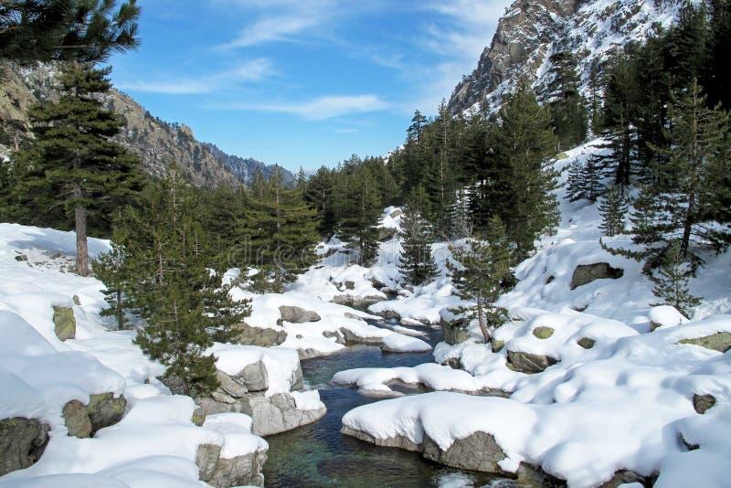 Snowy-lansdscape im Winter, Korsika, Frankreich, Europa lizenzfreies stockbild