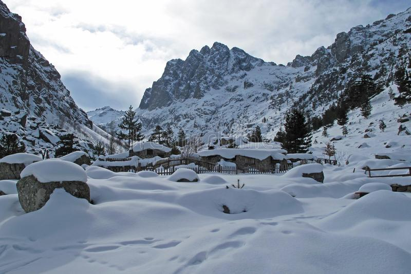 Snowy lansdscape in winter, Corsica, France, Europe. Snowy lansdscape with trees and a little stream in winter, Corsica, France, Europe stock images