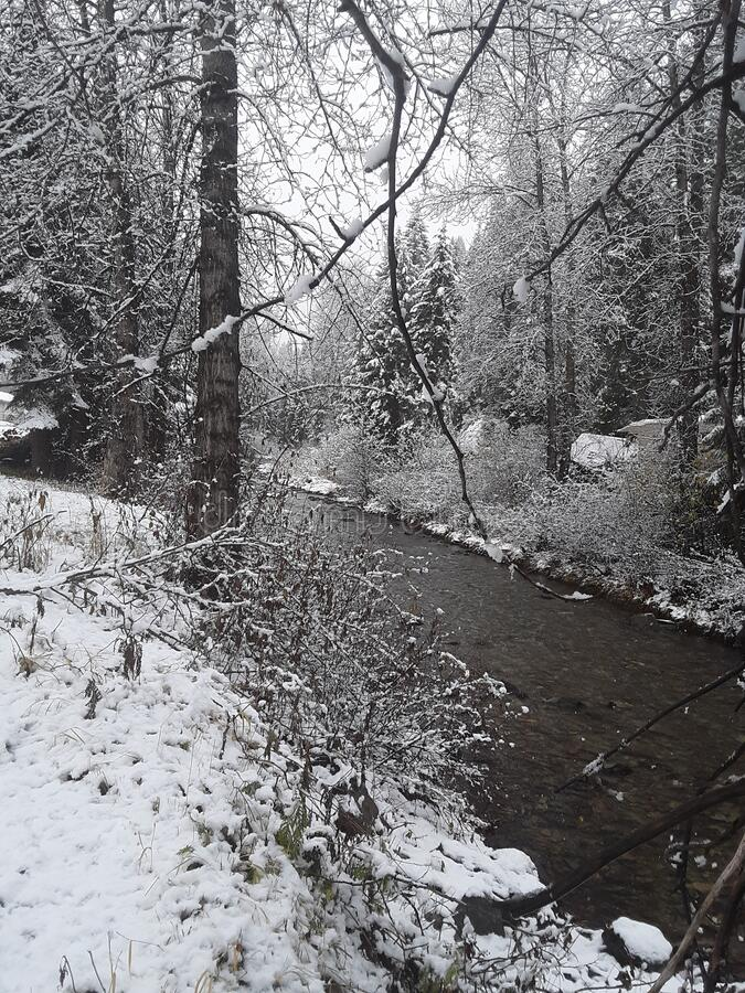 Snowy Lost Creek royalty free stock photography