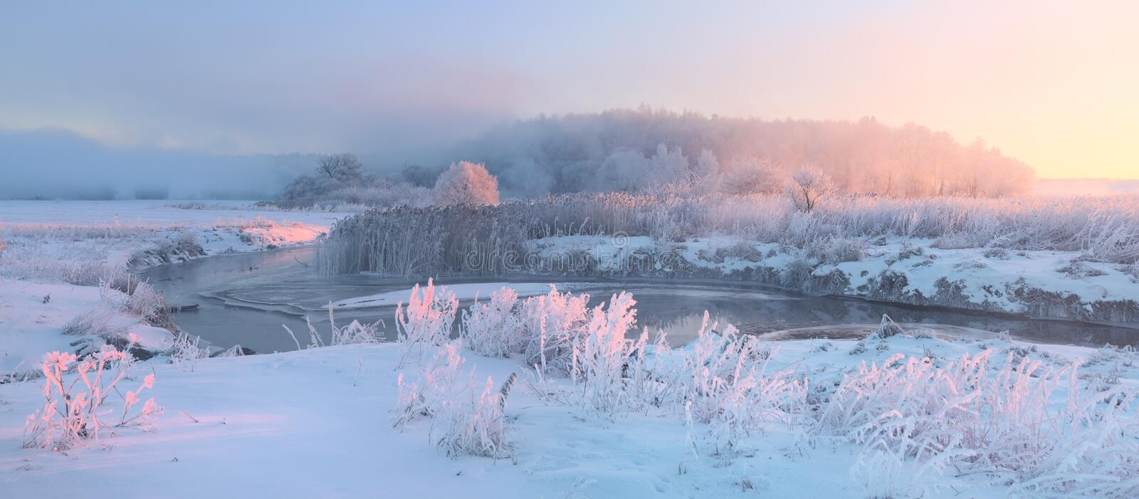 Snowy meadow and grass with hoarfrost illuminaed by rising sun. Beautiful winter landscape. Foggy winter morning stock image