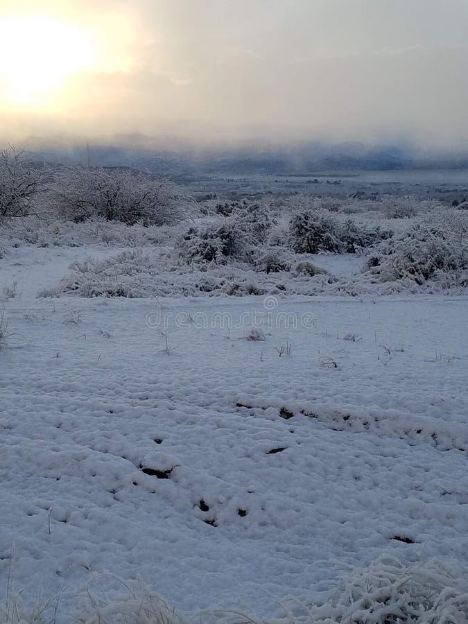Snowy Morning stock photos