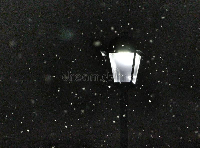 Snowy Morning Lamppost Free Public Domain Cc0 Image