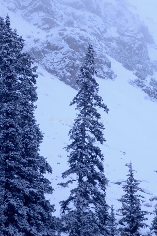 Free Snowy Mountain 1 Royalty Free Stock Image - 1482316