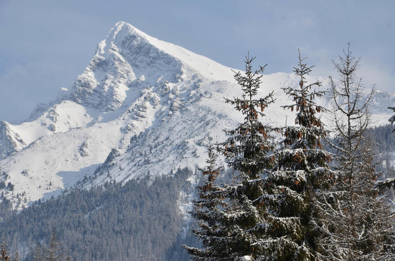 Download Snowy mountain stock photo. Image of cool, freeze, sunshine - 26691788