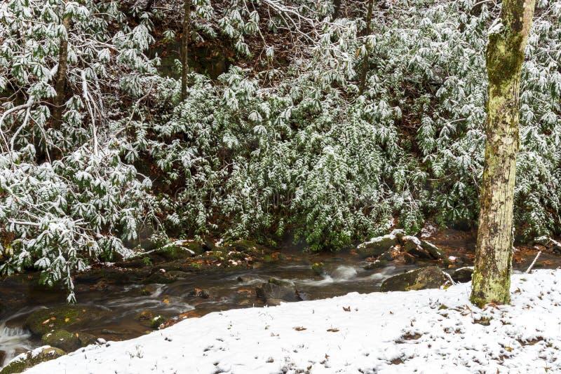 Snowy Mountain Creek. Horizontal shot of a snowy mountain creek stock photo