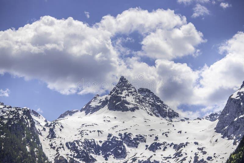 Snowy mountain range in Austria: Loferer Steinberge. Mountain Range in Austria in Summer: Snow mountain peak, Loferer Steinberger, mountains, snowy, summertime royalty free stock image