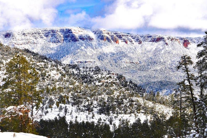 Snowy mountain ridge at high elevation Arizona. Mogollon Rim Payson Arizona snow dump over Ponderosa pine trees in winter stock photos