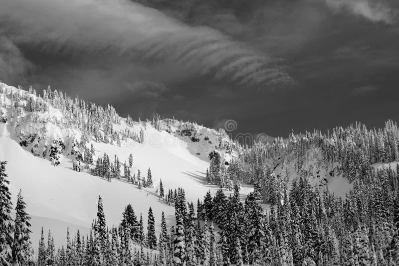 Snowy Mountain Scene In Black And White At Mount Rainier National Park. Mazama Ridge Under Heavy Snow and Blue Skies At Mount Rainier National Park royalty free stock image