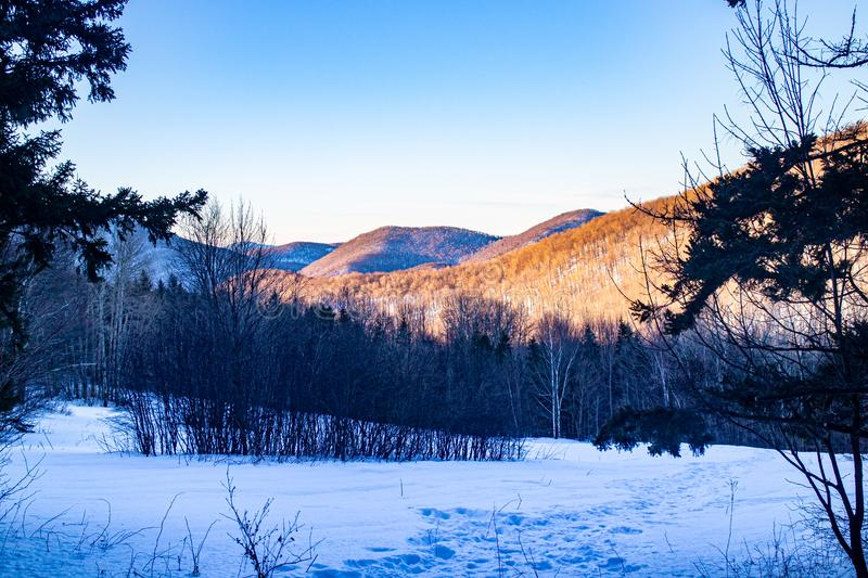 Snowy mountain view in Vermont. Snowy morning-time mountain view as the sun rises in Vermont, USA royalty free stock photography
