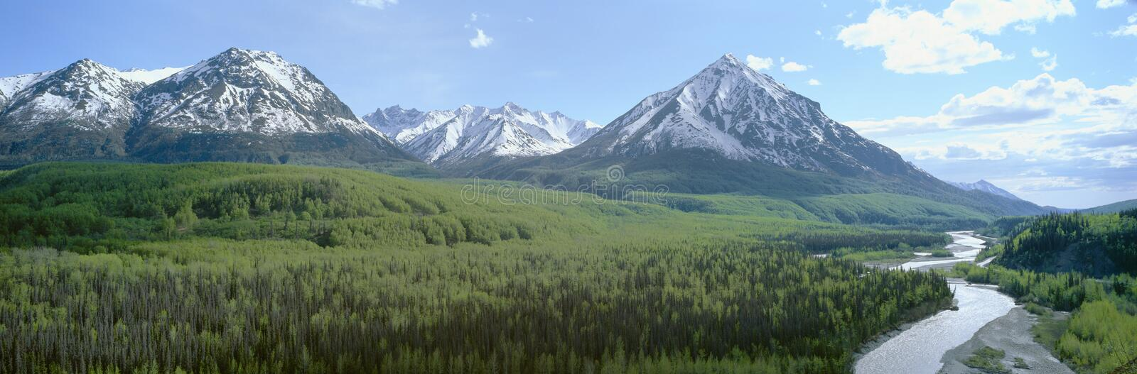 Snowy mountains,. Green forests and river in Matanuska Valley, Alaska royalty free stock photos