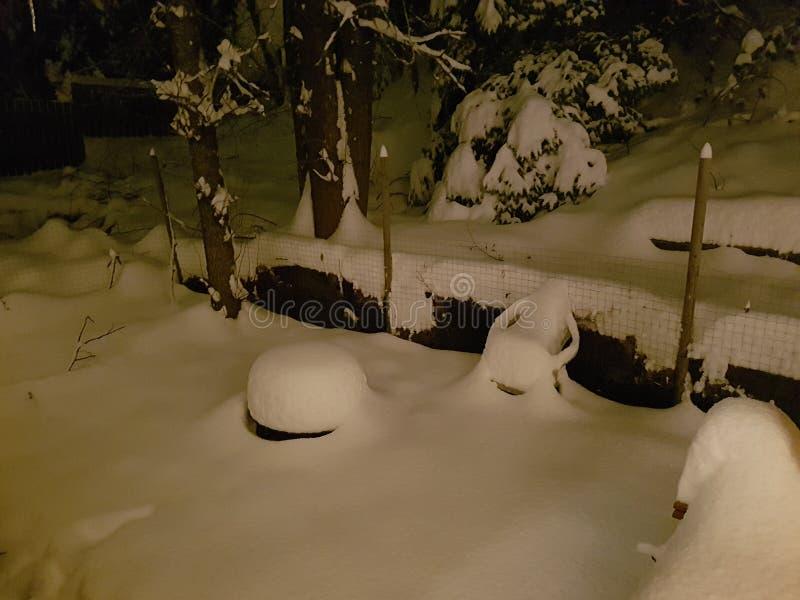 Snowy-Nacht lizenzfreies stockbild