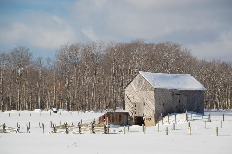 Download Snowy Old Barn With Diagonal Boards And Barnyard Landscape Stock Image
