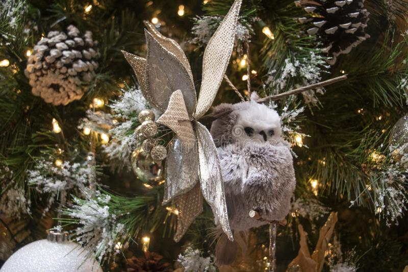 Snowy Owl and Pine Cones on A Frosty Christmas Tree royalty free stock photography