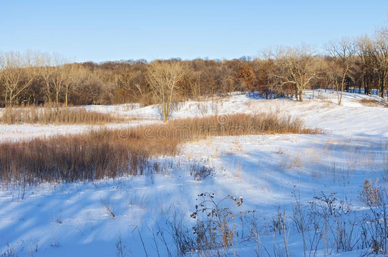Snowy Prairie Hills and Woodlands of Battle Creek. Prairie hills and woodlands of battle creek regional park in saint paul minnesota stock images
