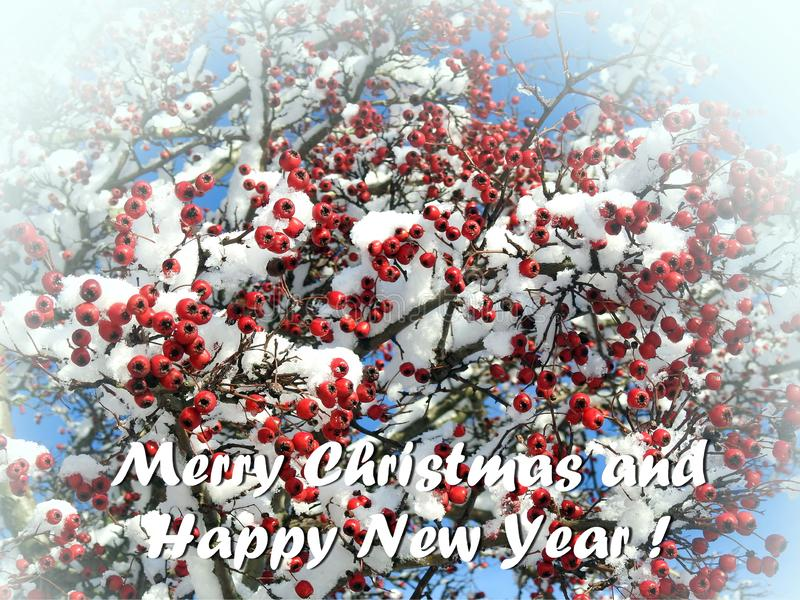 Merry Christmas and Happy New Year card  , Lithuania stock images
