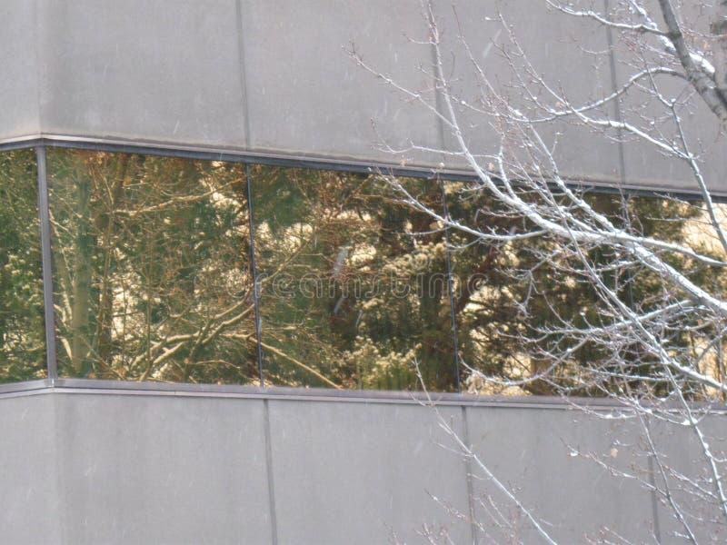 Download Snowy Reflections Greenbelt Boise Idaho Stock Image - Image of landscape, gray: 81128533