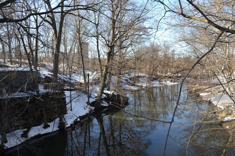 Snowy Riverbank. Bronx river in the winter with snow stock photo