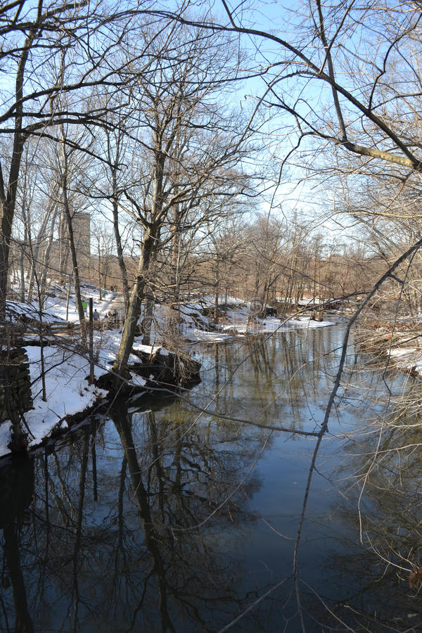 Snowy Riverbank. Bronx river in the winter with snow royalty free stock photo