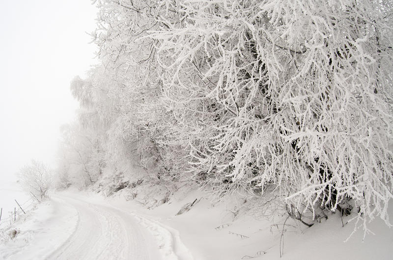 Snowy road. In a village;Winter time royalty free stock photography