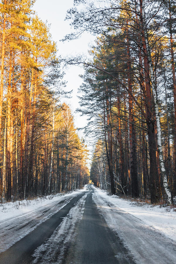 Download Snowy road stock image. Image of countryside, branch - 28369183