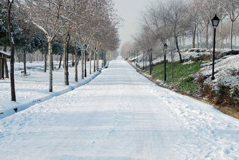 Download Snowy road stock photo. Image of scene, bench, quiet, alone - 7715152